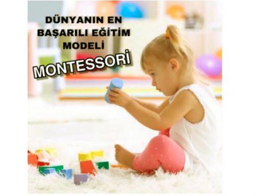Montesorri Modeli